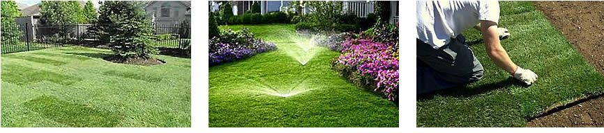 Downriver Landscaping Company